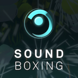 soundboxing